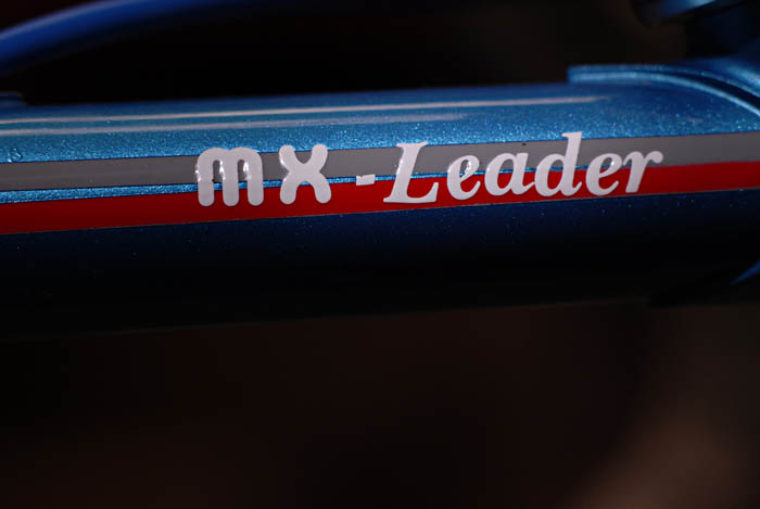MX leader