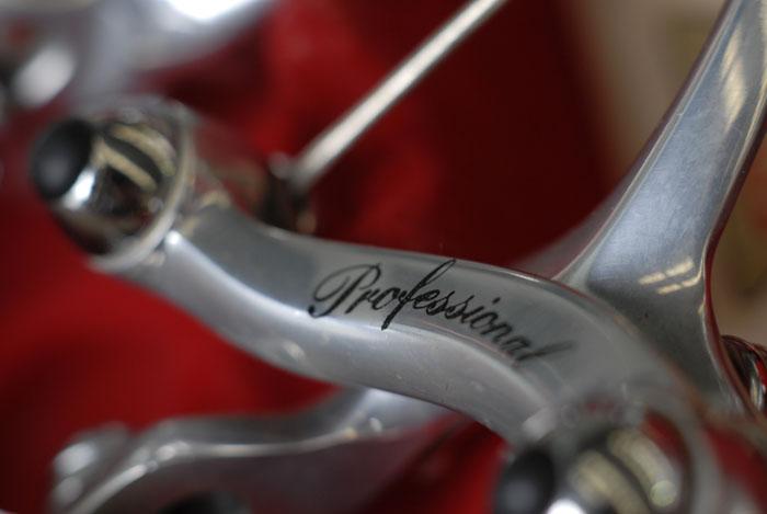 Modolo Professioanl brake caliper in silver finish