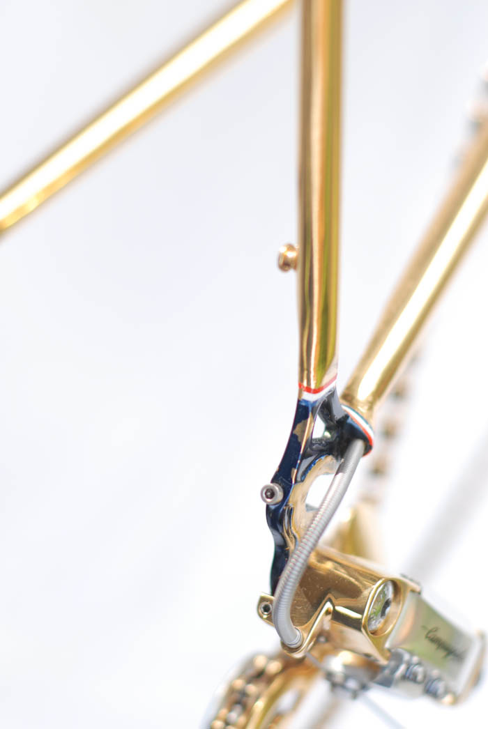 ICS Zurich rear dropouts and chain hanger.