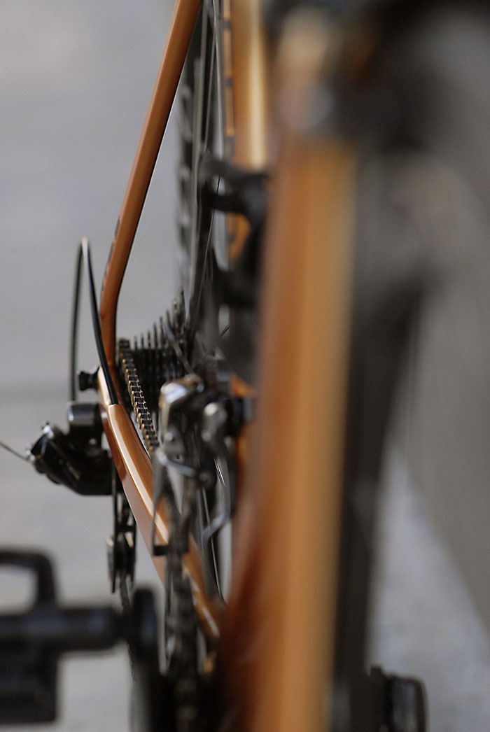 Legend by Bertoletti Bicycles show clean lines.  Damien's 9.5 has a colour matched chain.