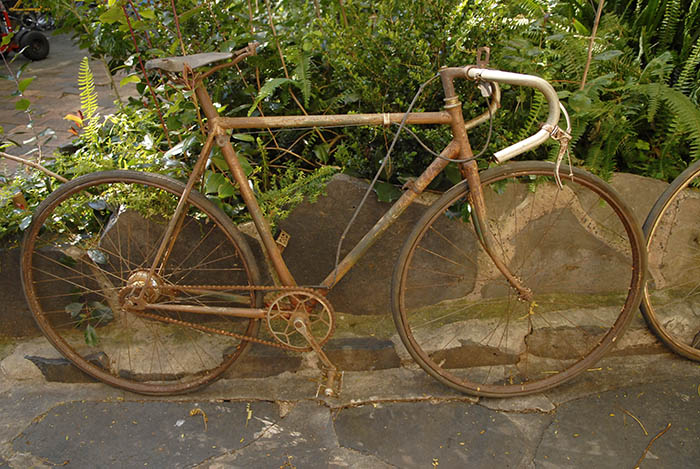 Bike overflow, swiftly returning to nature, James had a garden full of rusting bikes.