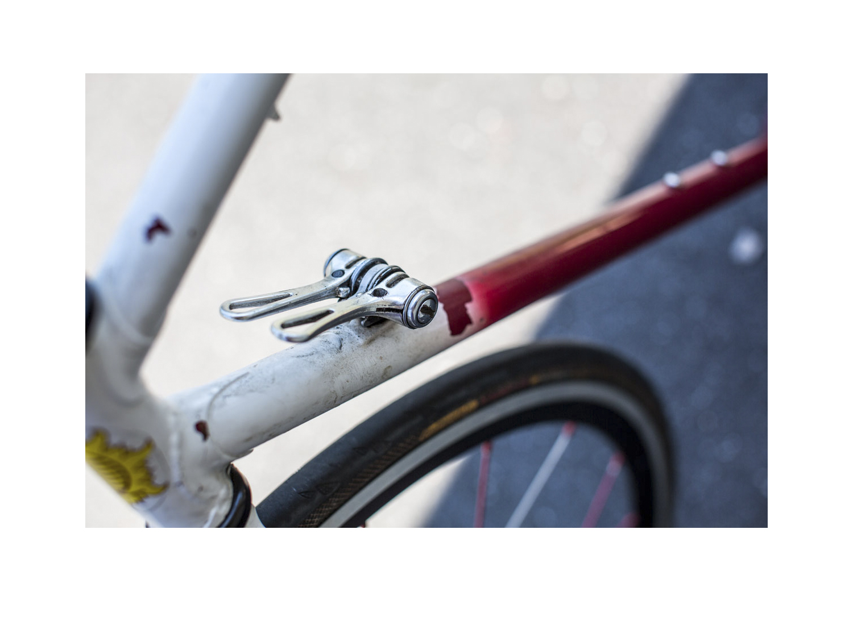 milo bike team time trial.jpg