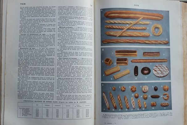 Larousse Gastronomique + Larousse Was Not A Real Chef by Carlye Jane Dougherty 11.jpg