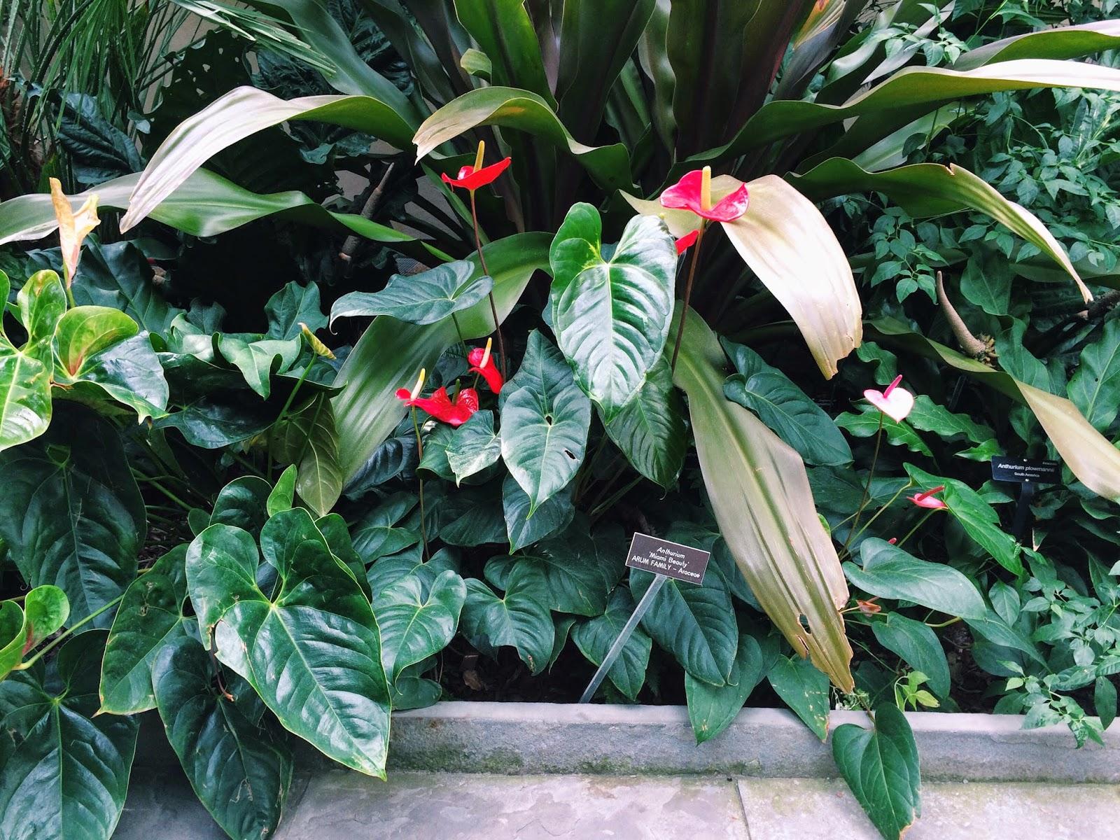 Botanical Gardening