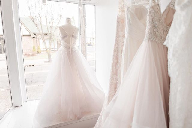 All the storefront pretty in #cincinnati ✨ Tag a bride babe who needs to shop here 🙋🏽♀️