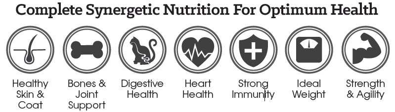 Complete Synergetic Nutrition For Optimum Health