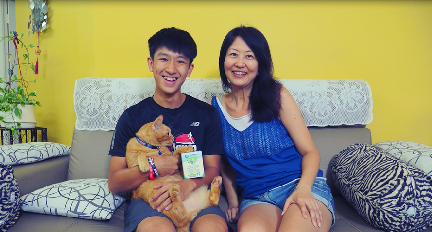 Click to watch video on Merewyn's beloved companion, Pichu's paw to recovery