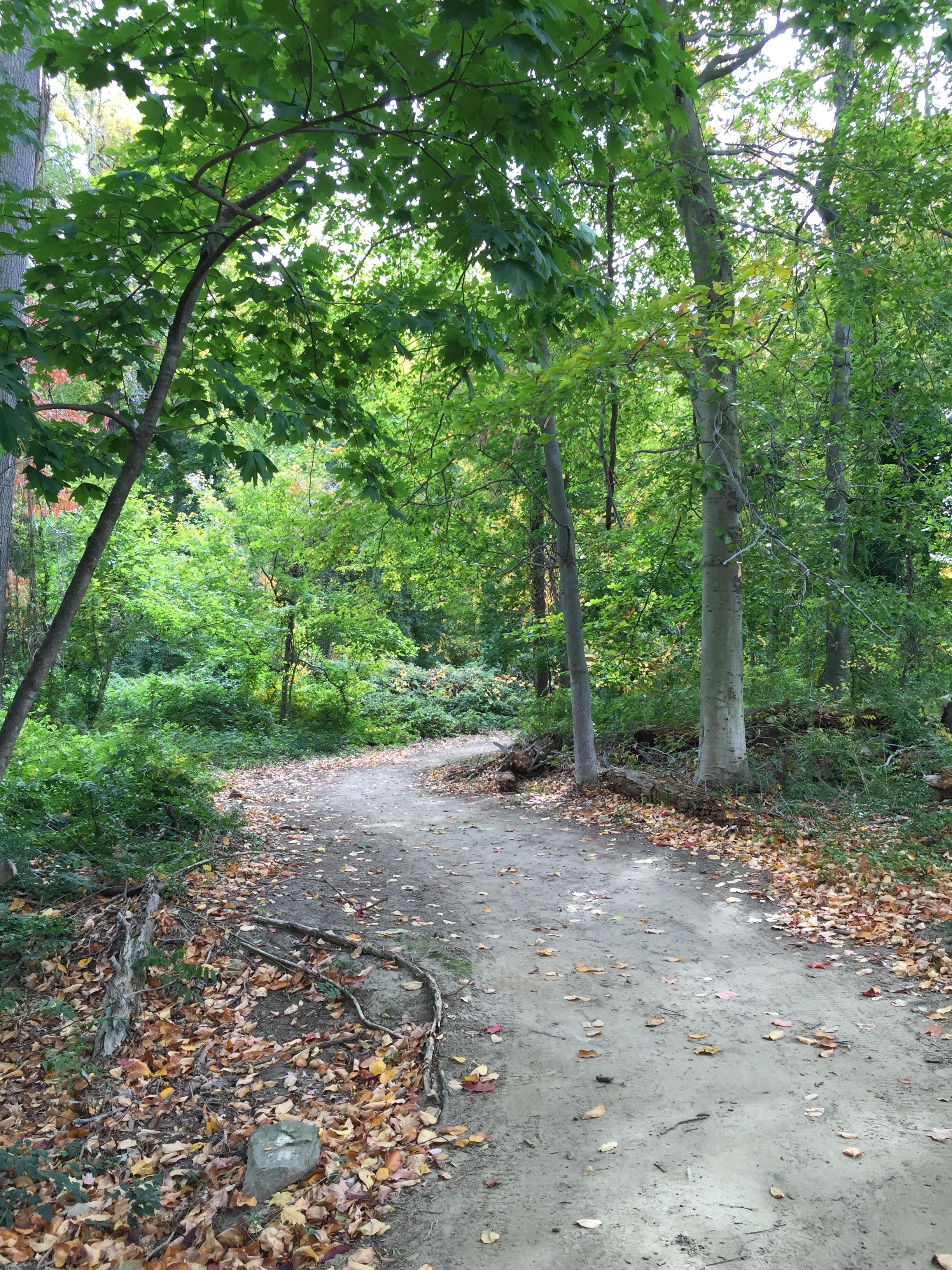Part of Hudson River Walk on Kendal property
