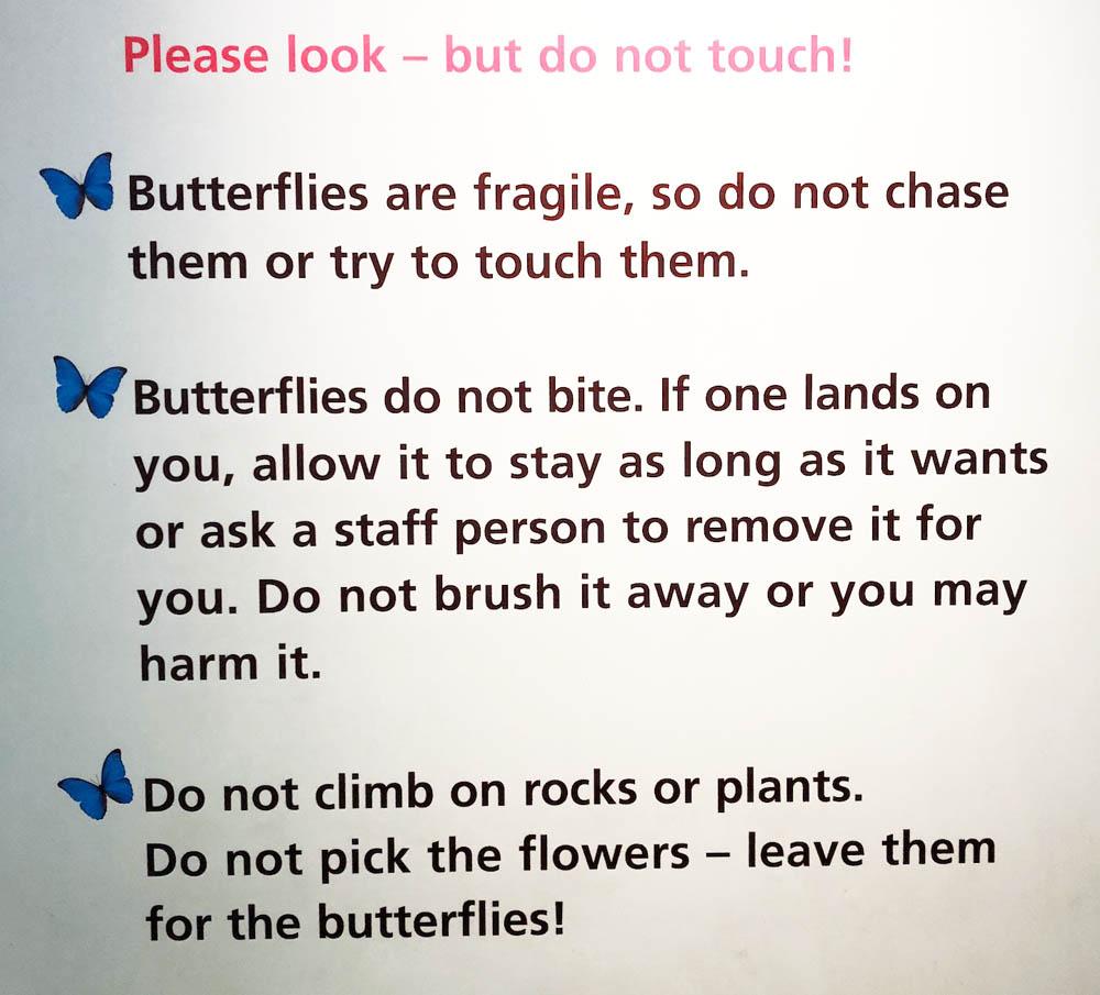 sign for butterflies.jpg