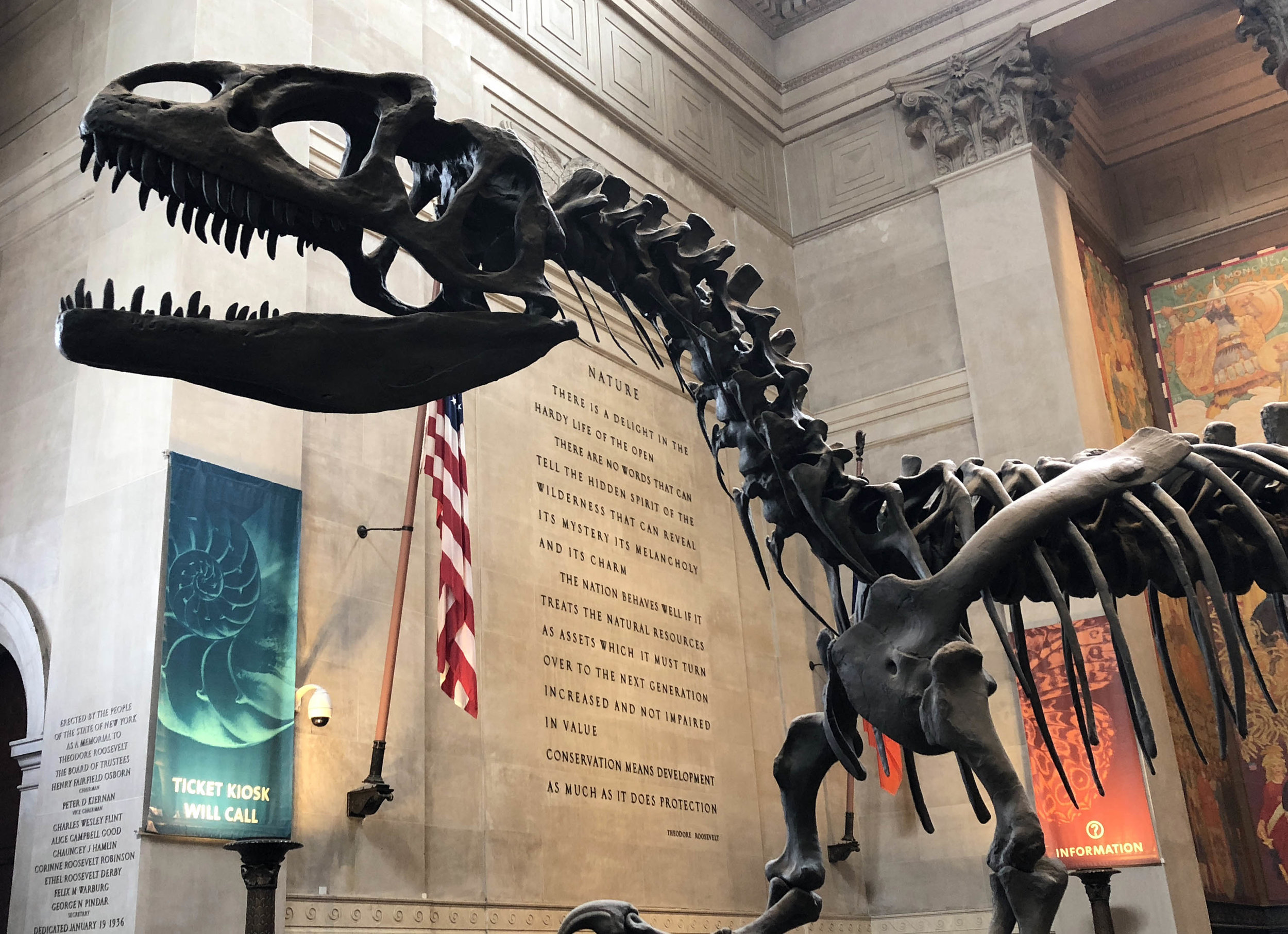 dinosaur 89.jpg