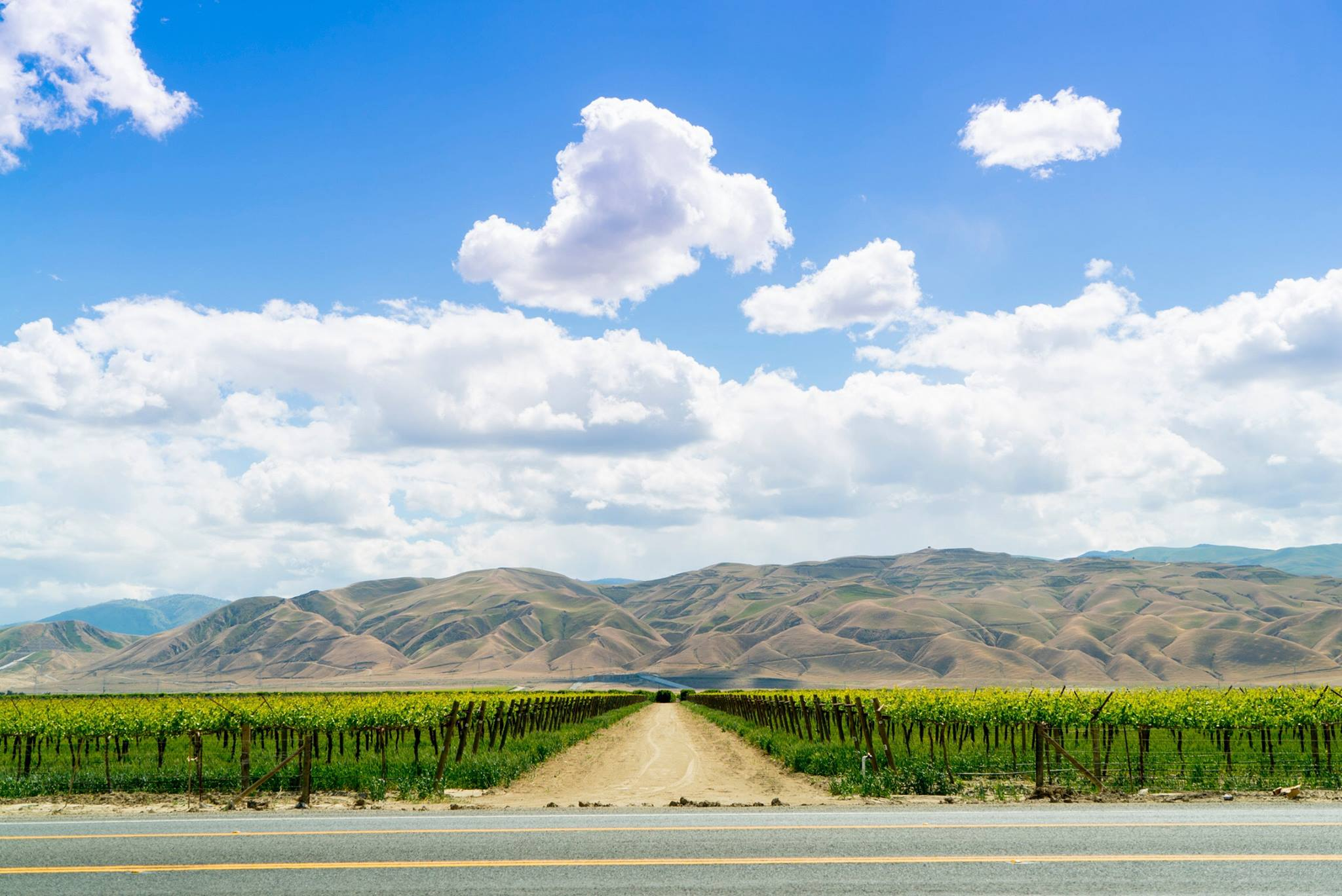 Road_Cali.jpg