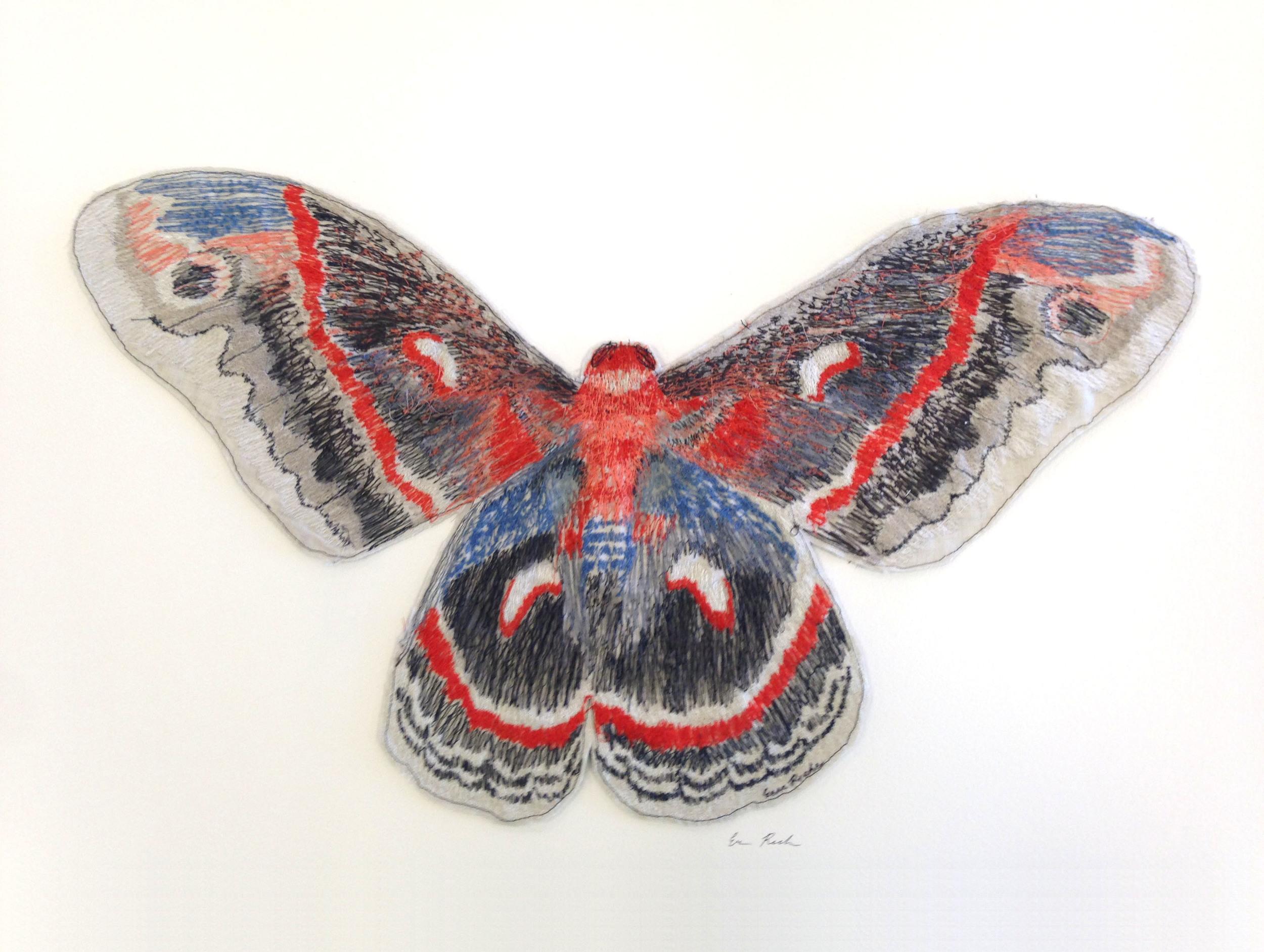 Giant Silk Moth.jpg