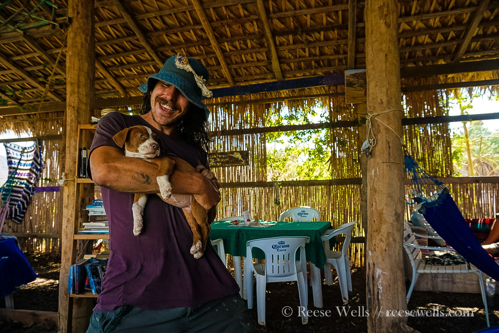 We found PUPPIES! A necessary two day stop in Muluge, Baja Sur.