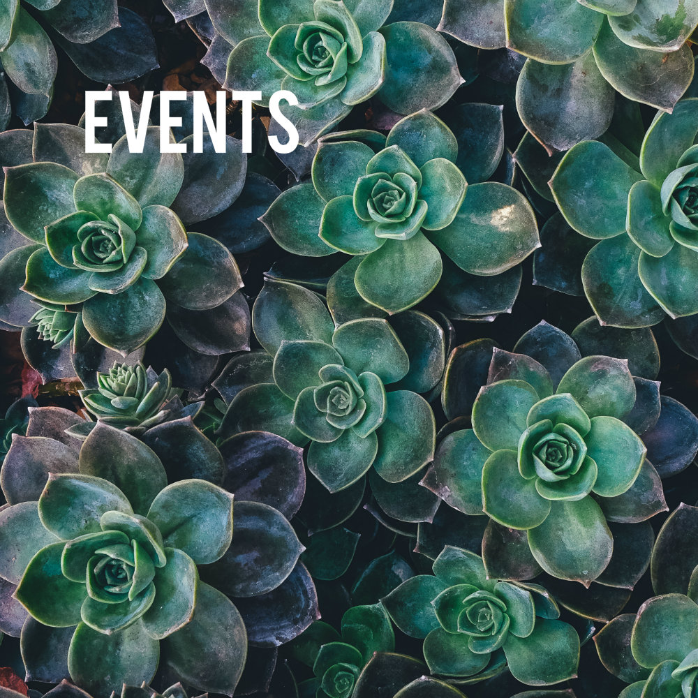 Events 4.jpg