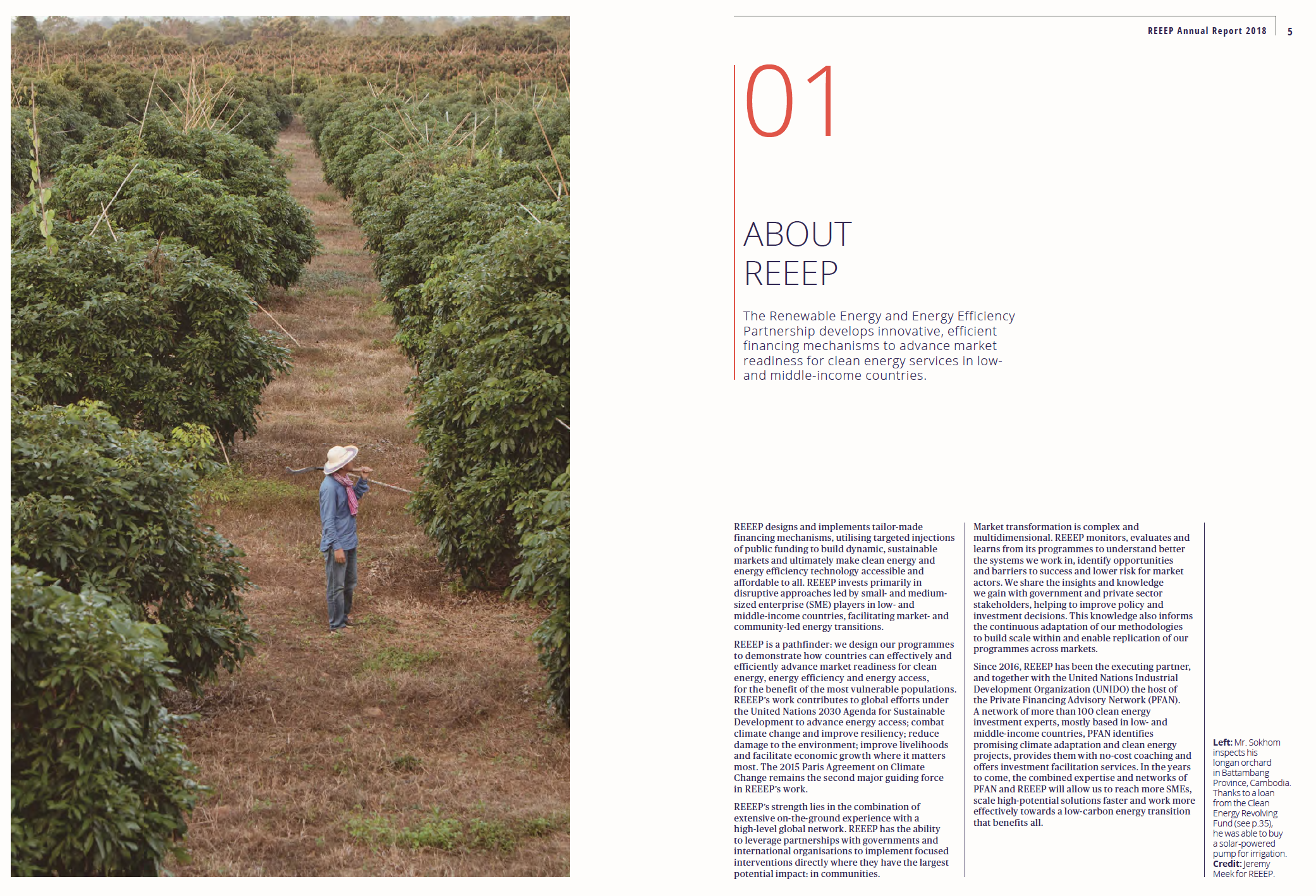 Annual Report for REEEP
