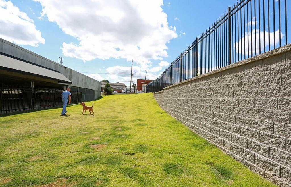 LEASH-FREE DOG PARK