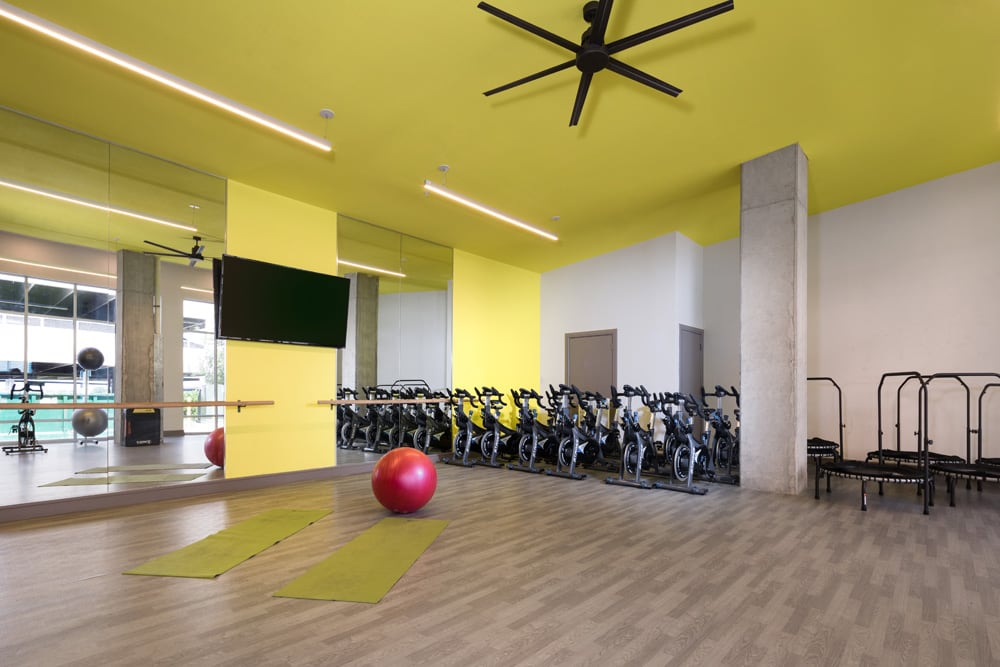 FREE WORKOUT CLASSES