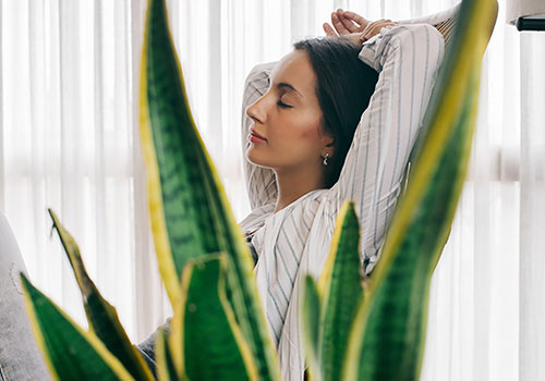 3 Minute Breathing Space - Try this short guided meditation practice from Work Well Being Associate Molly, to reinvigorate your brain and gain clarity and focus.