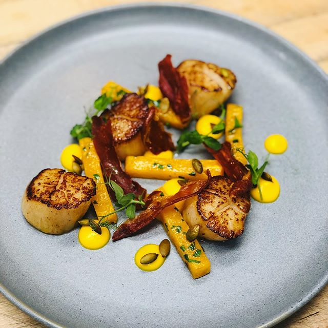 Playing around with a potential new scallop setup! Squash & prosciutto. What do you think?