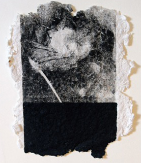 Plucked to Death #2  -  $100  - Unique Lithograph and Engraving on Hand Made Paper - 5'' x 6'' UNFRAMED.