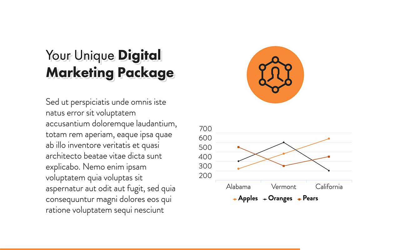 Digital Marketing Proposal - 16.jpg