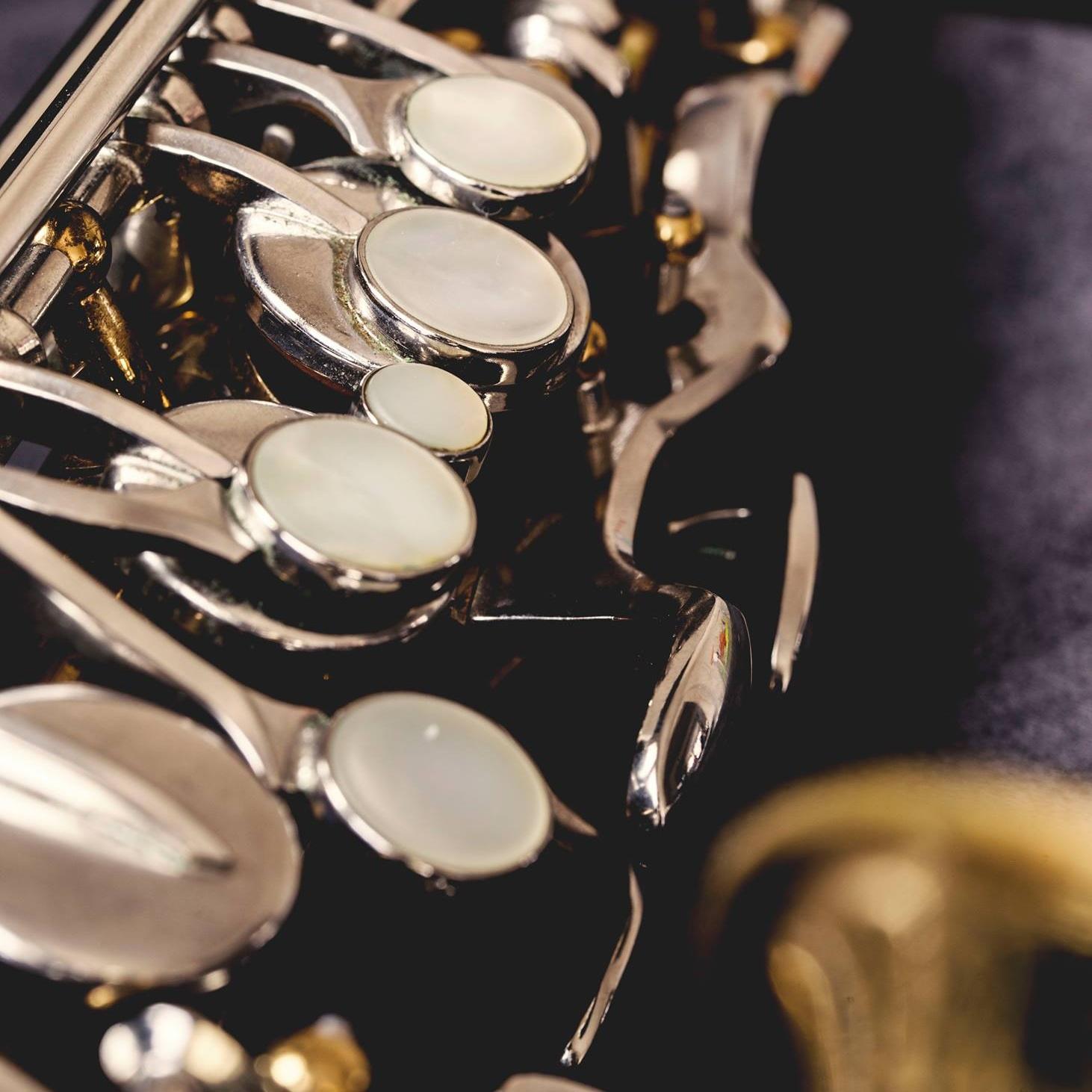 David | Saxophone, Flute, Clarinet, & Piano