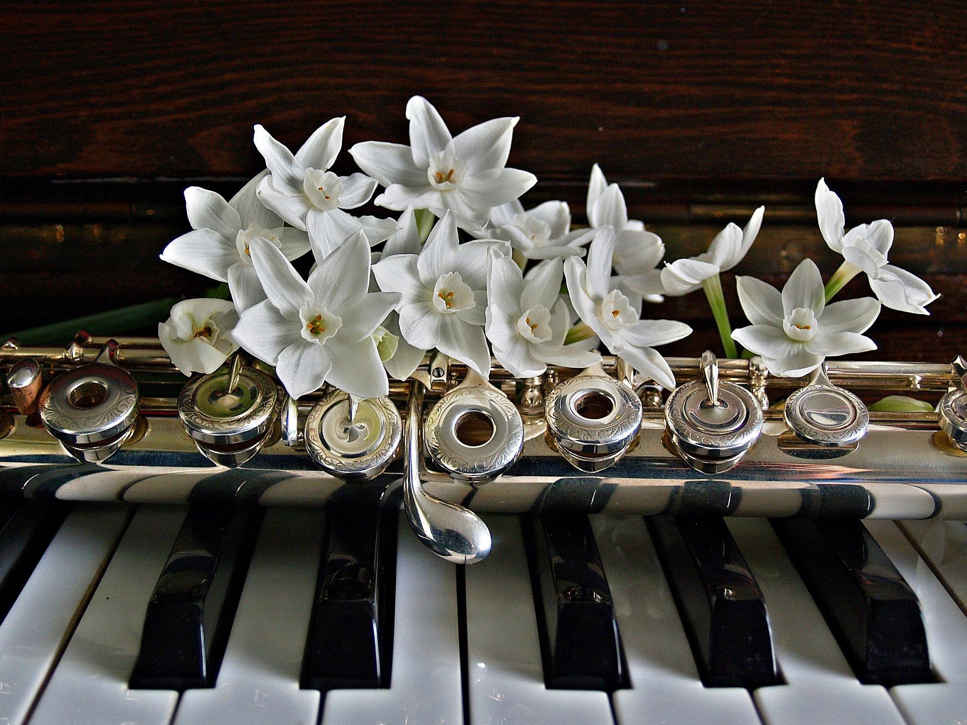 Lauren | Flute, Piano, Voice, & Songwriting