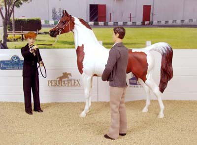"OJF Too Kool is a good example of a ""light breed"" horse in showmanship!"