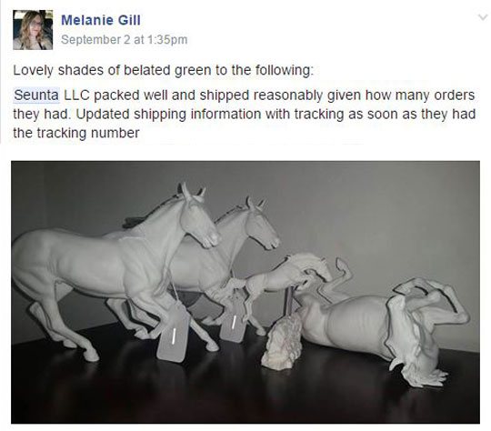 melanie-gill2.jpg