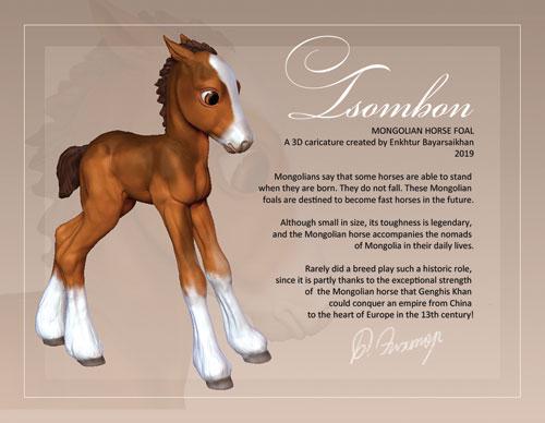 1_Tsombon_foal_front.jpg