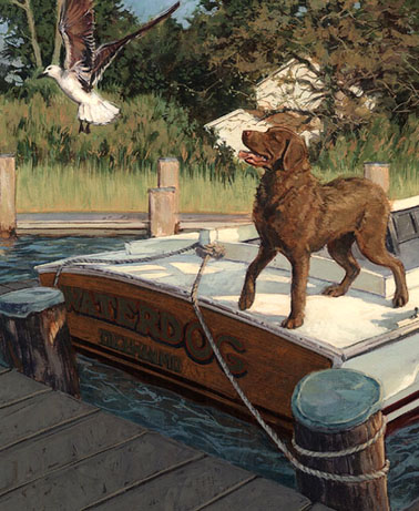 Chesapeake_Bay_Retriever.jpg
