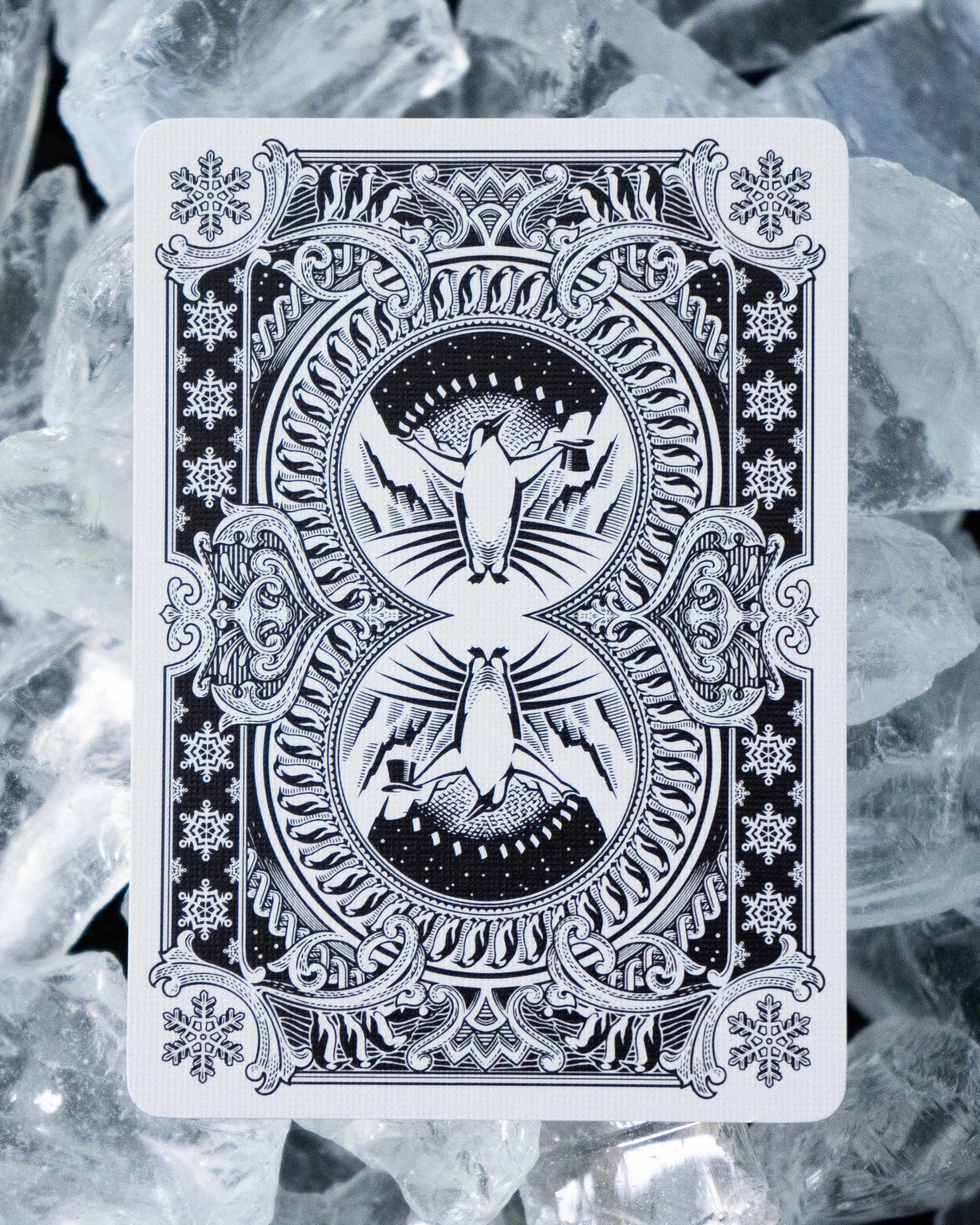 Emperor Back Ice 4x5.jpg