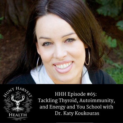 Episode #38_ Navigating Lyme Disease with Dr. Darin IngelsPart 1-8.png