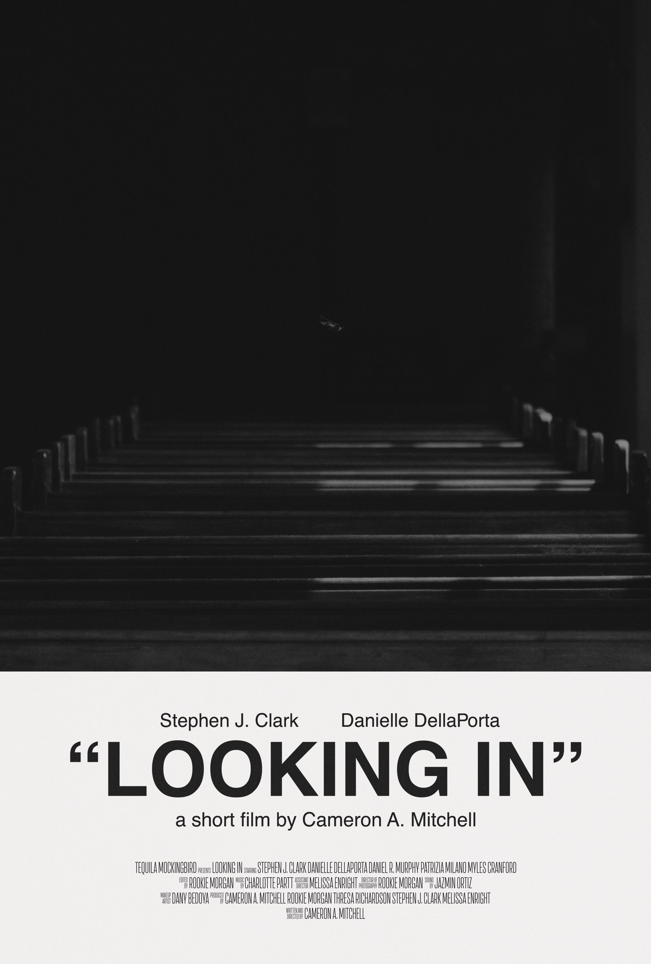 LookingIn_Poster.jpg