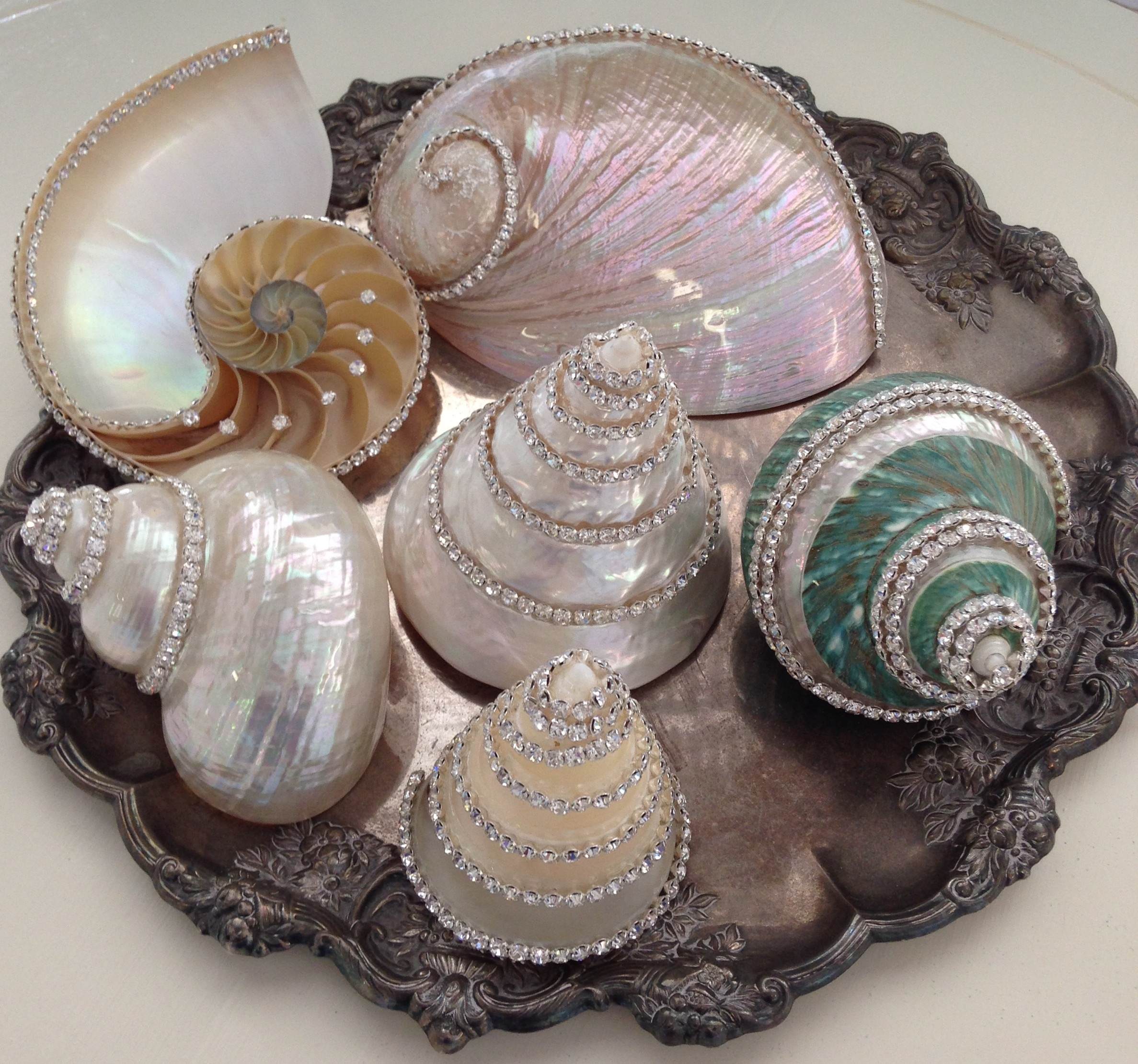 Weddings~ Swarovski embellished shells