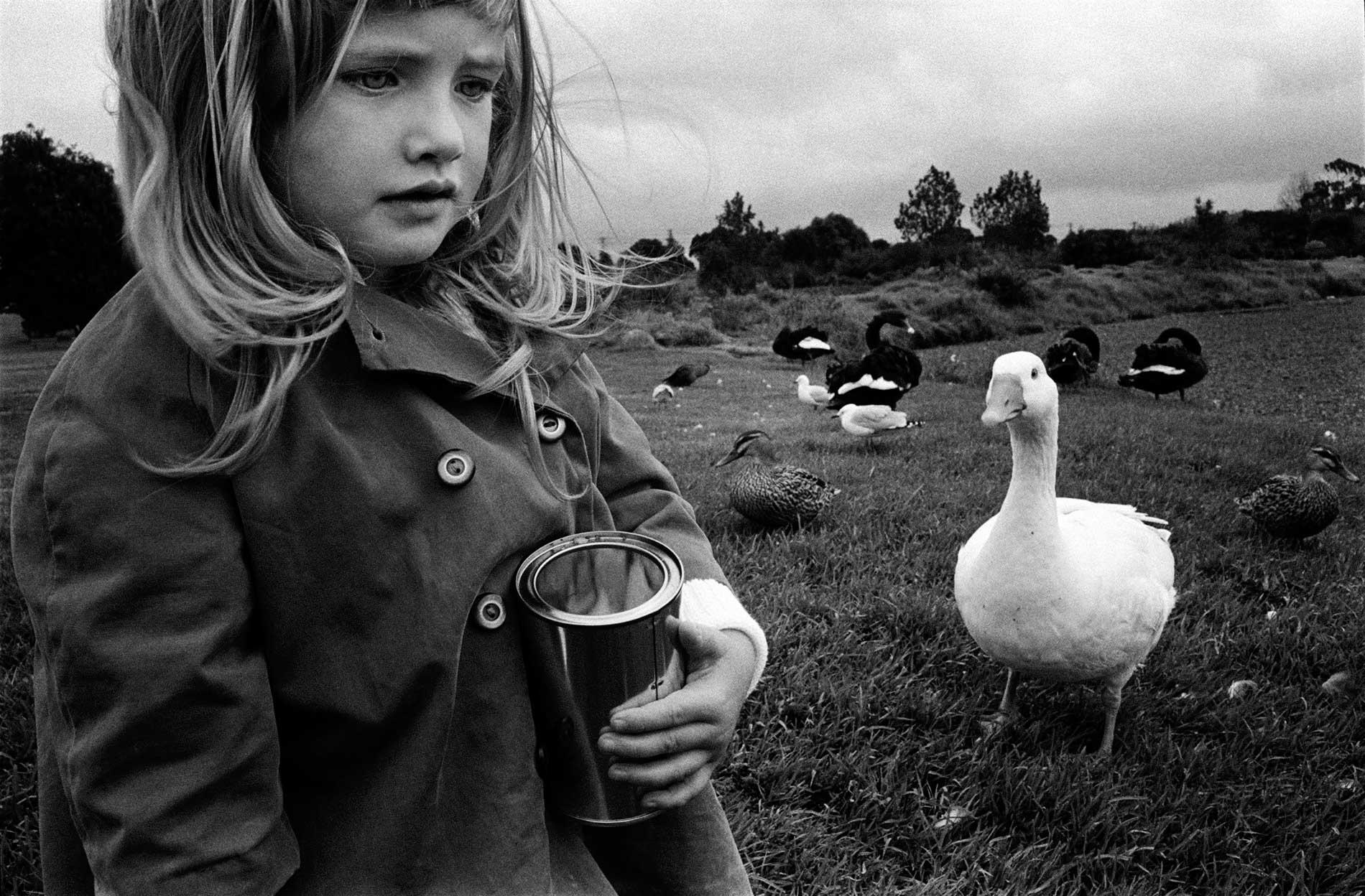 Auckland, 1977
