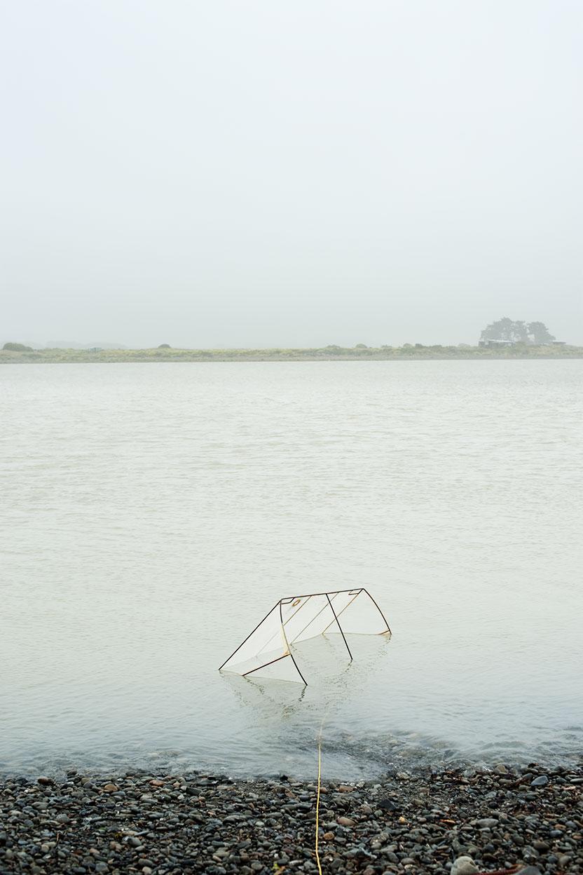 whitebait-net_Otaki River 2010 Bruce Foster.jpg