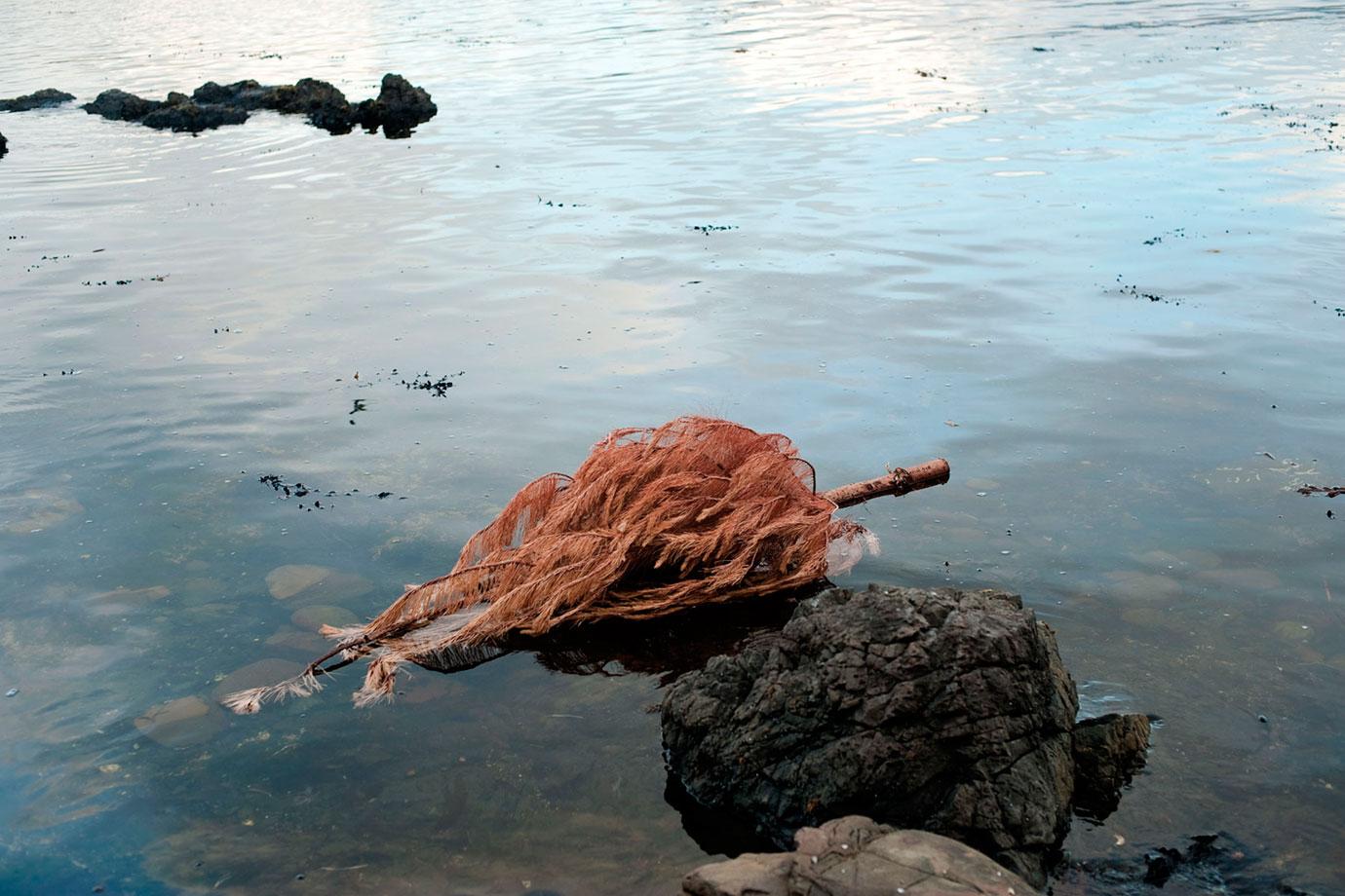 xmas-tree_2011-bruce-foster.jpg