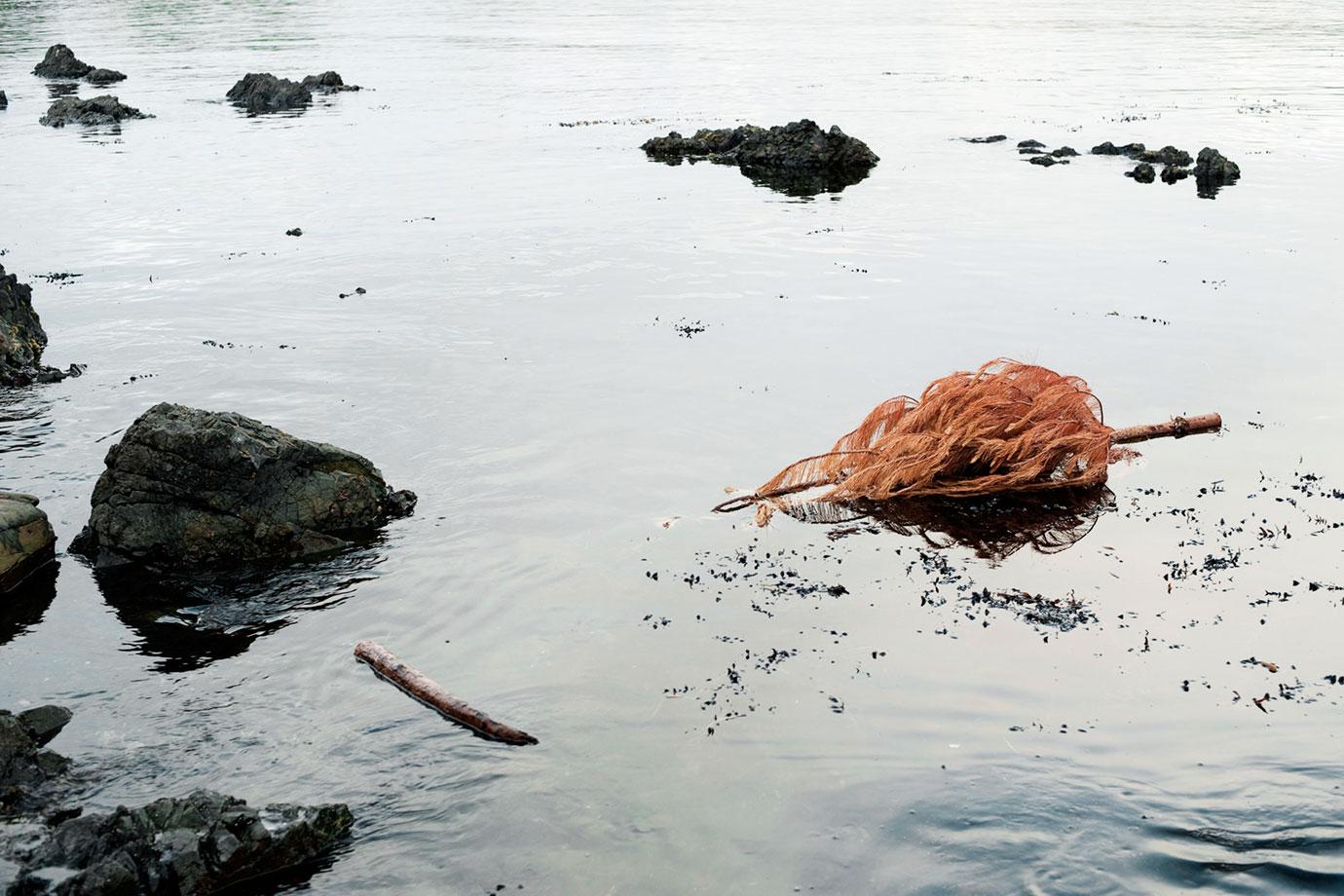 Breaker Bay, 2011