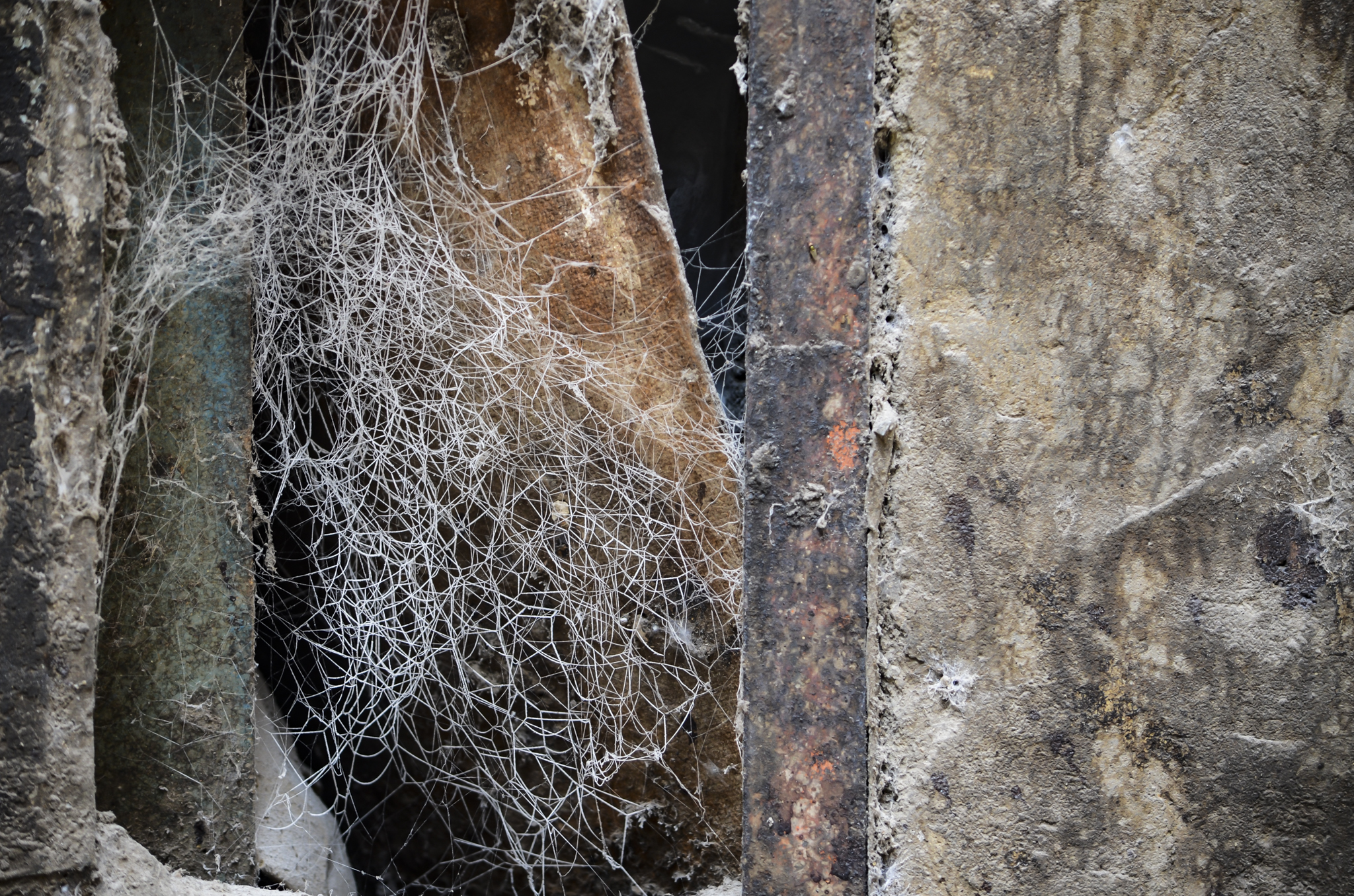 Spiderwebs weaving the threads of memories and trying to lock the fibers of the past with the present..