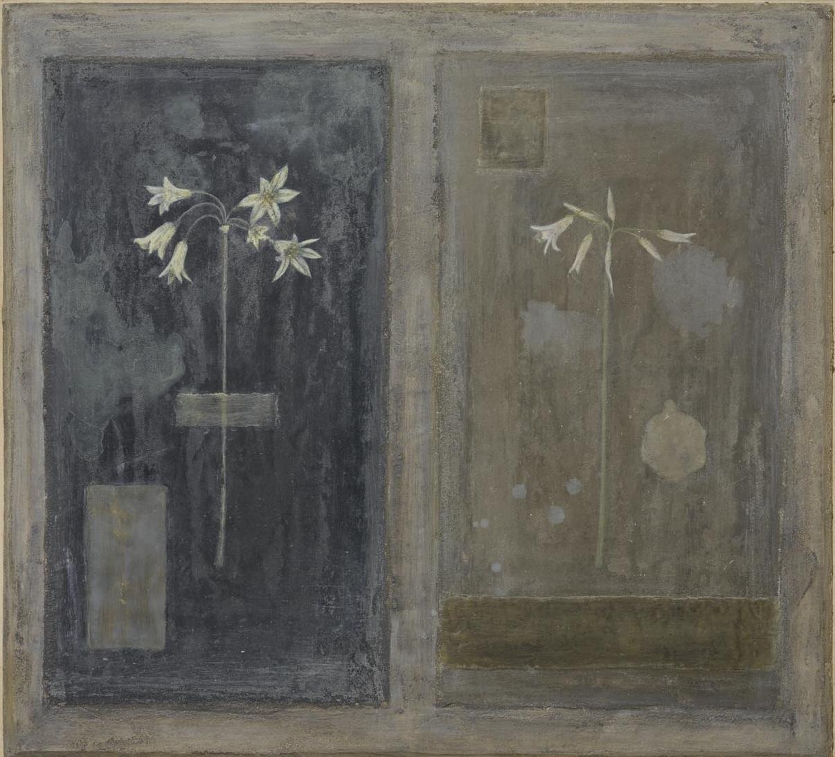 Allium Triquetrum - fresco, wax on panel 48 x 53 cm
