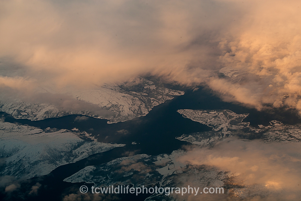 The view from the plane showed us the beautiful frozen fjord system of northern Norway. The arctic in winter is truly a sight to behold. It is here where an anual wildlife spectacle takes place. The fjords shelter huge schools of herring and it is these that attract giants.