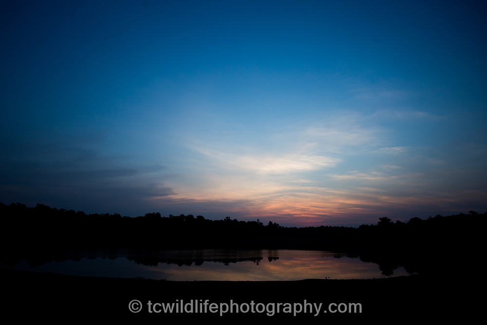 Tadoba is famous for its beautiful lakes...
