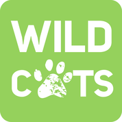 Help me support wild tigers by clicking on the above link