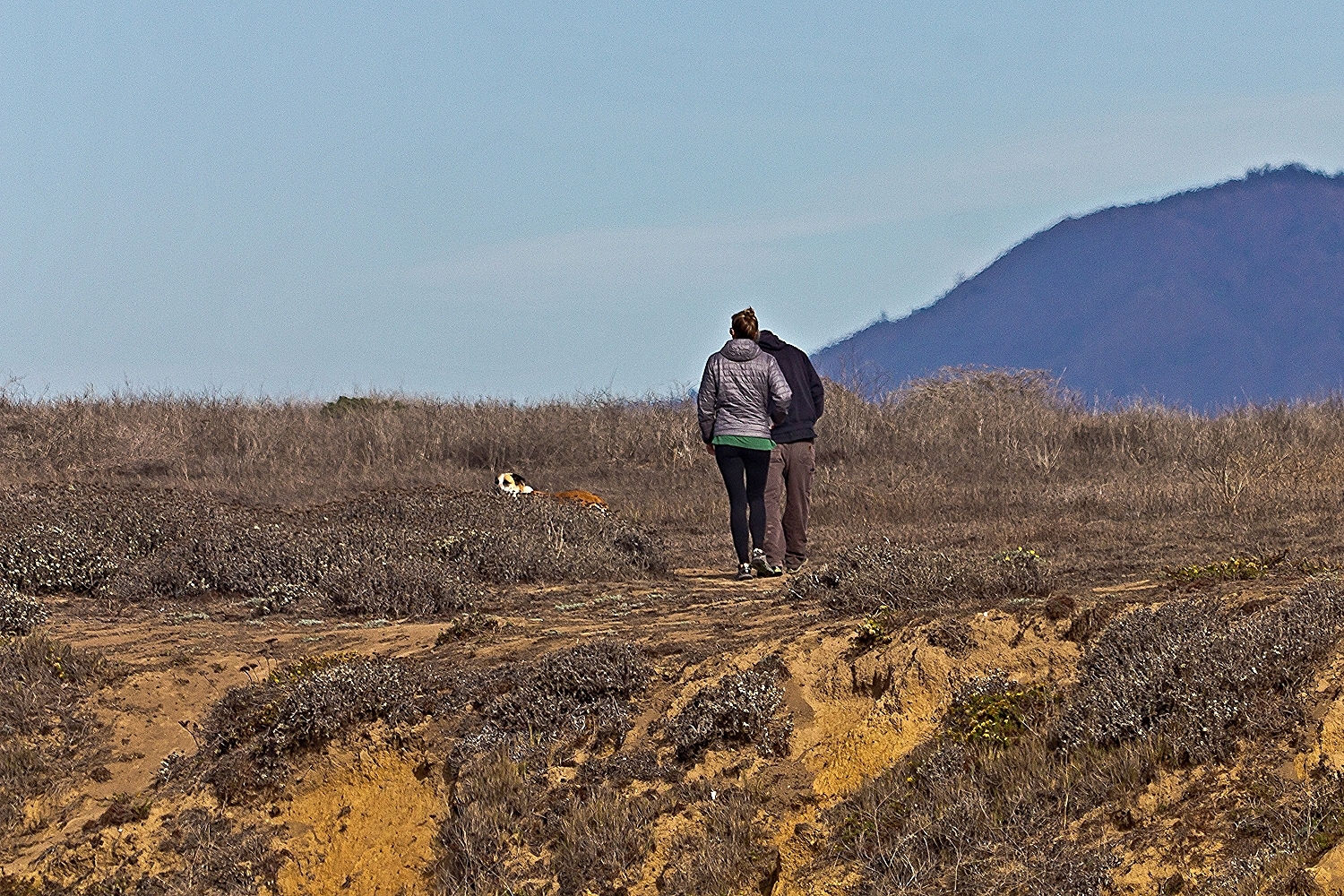 Piedras Blancas Seaside Trail