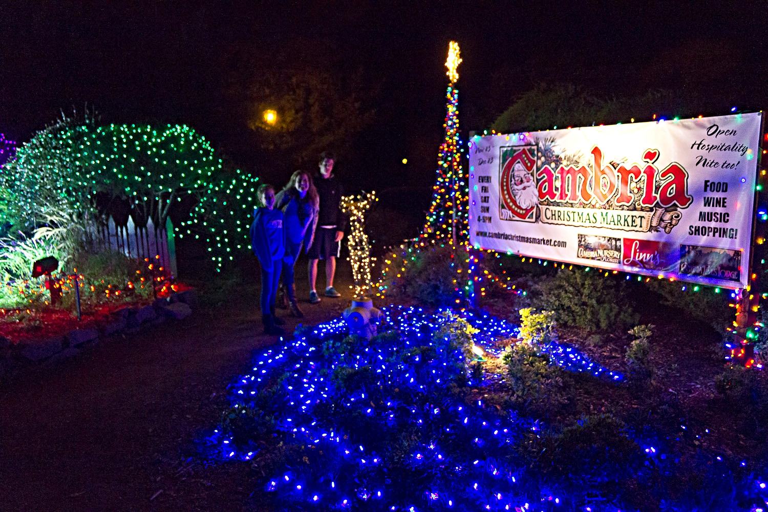 Visit the Cambria Christmas Market every December at the Cambria Pines Lodge - 2905 Burton Dr, Cambria, CA 93428.