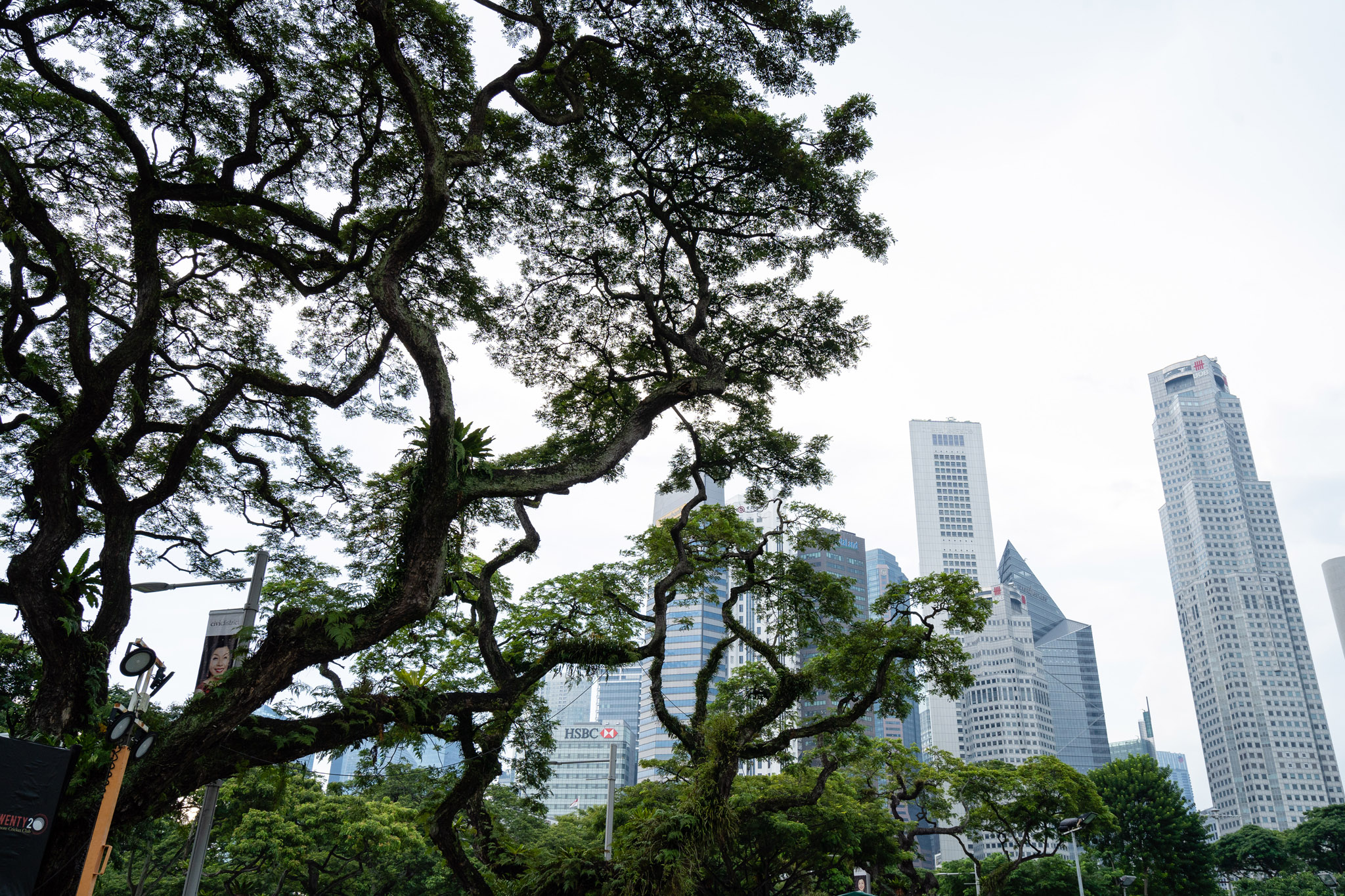 viator-singapore-photographer-tourism-tours-zoo-little-india-gardens-marina-bay-001.jpg