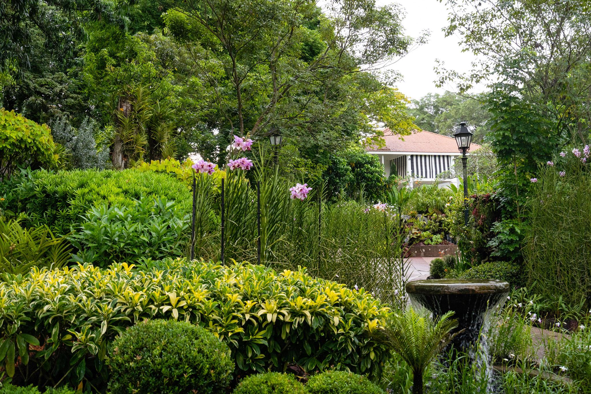 viator-singapore-photographer-tourism-tours-zoo-little-india-gardens-marina-bay-002.jpg