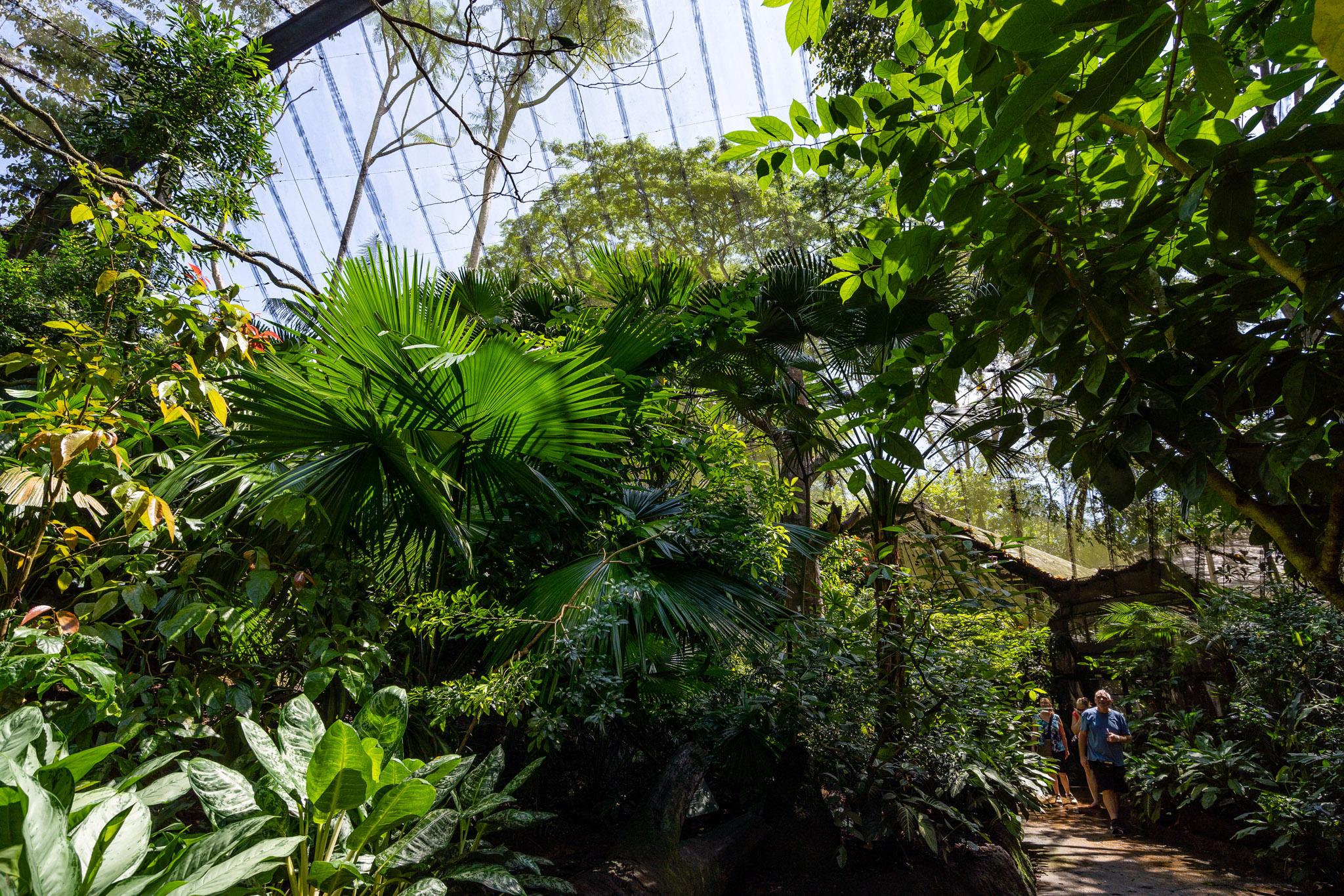 viator-singapore-photographer-tourism-tours-zoo-little-india-gardens-marina-bay-010.jpg