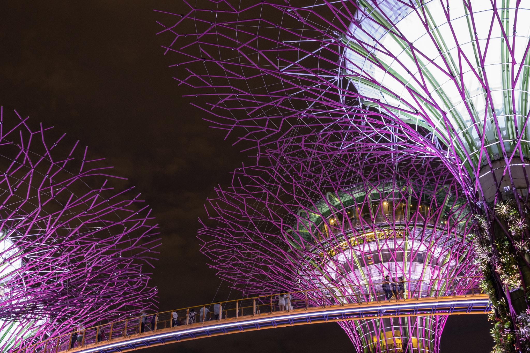 viator-singapore-photographer-tourism-tours-zoo-little-india-gardens-marina-bay-018.jpg